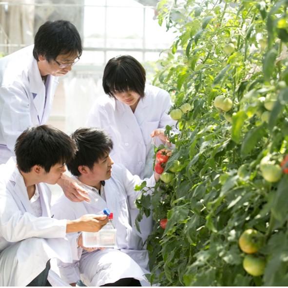 生命農学科通信 vol.35「2019年度 研究成果紹介~第…