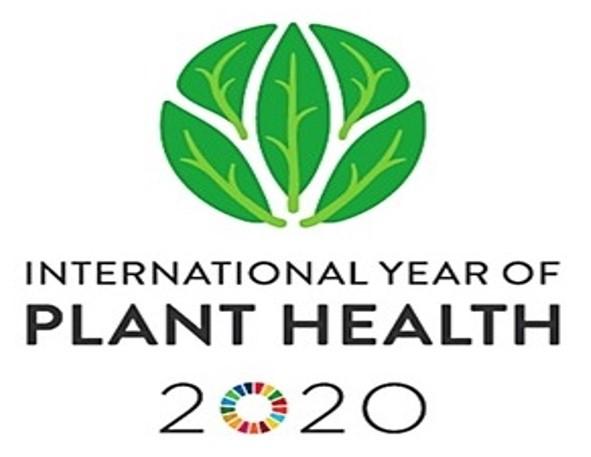 生命農学科通信 vol.39「植物医科学と国際植物防疫年」