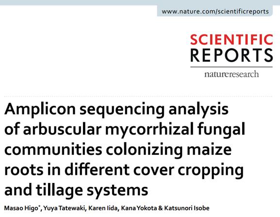 生命農学科 肥後昌男専任講師の研究成果が Nature系科学…