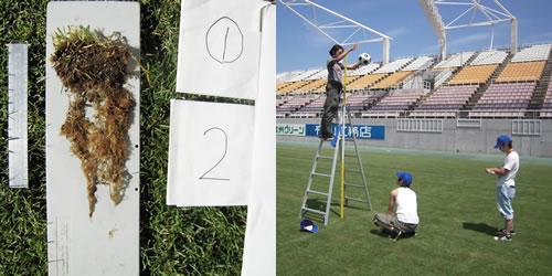 競技場等における芝草の生育とプレーイングクオリティー