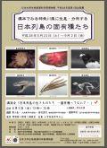 標本で見る神奈川県に生息・分布する日本列島の固有種たち