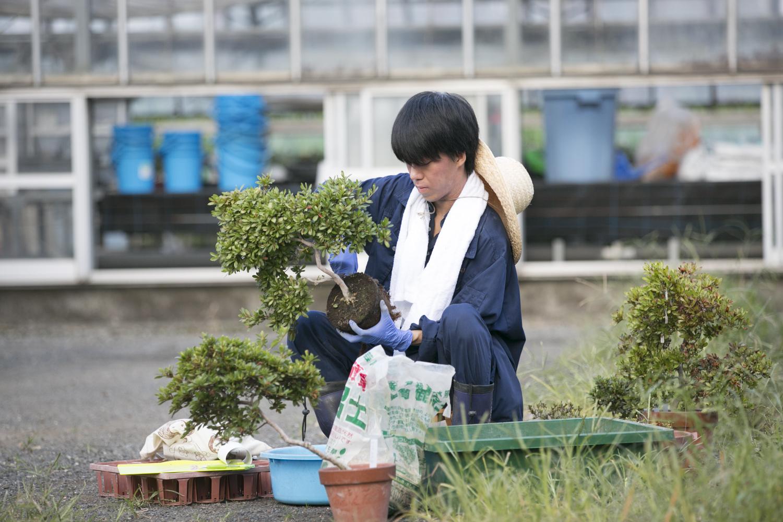 日本大学 生物資源科学部 生命農学科